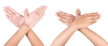 Vogel der Hand Stockfoto