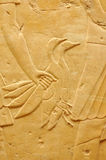 Vogel in der Hand Stockfotos