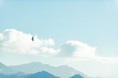 Vogel, der im Himmel über Bergen ansteigt Lizenzfreie Stockfotos