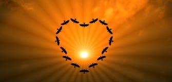 Vogel die hart op hemel samen maken royalty-vrije illustratie