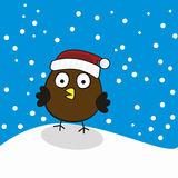 Vogel in een Rood GLB bij de Achtergrond de Wintersneeuwval Royalty-vrije Stock Afbeeldingen