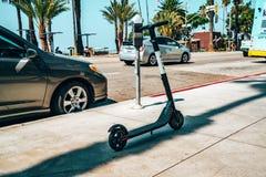 Vogel-elektrische Fahrt, die Roller im sonnigen LA teilt stockbilder