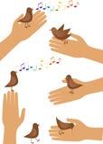 Vogel en hand Stock Afbeelding