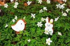 Vogel en konijntje stock foto's