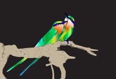 Vogel en natuurlijk Royalty-vrije Stock Foto