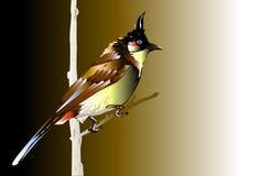 Vogel en natuurlijk Royalty-vrije Stock Afbeeldingen