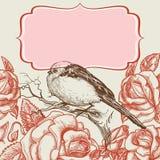 Vogel en rozen stock illustratie