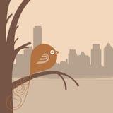 Vogel en stad Royalty-vrije Stock Foto's