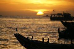 Vogel en zonsondergang Royalty-vrije Stock Foto