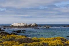 Vogel-Felsen bei einem 17 Meilen-Antrieb Lizenzfreie Stockfotografie