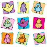 Vogel-Frühlings-Ansammlung Lizenzfreies Stockfoto