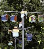 Vogel-Häuser Lizenzfreies Stockbild