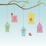Vogel-Häuser mit einigen Vögeln Stockbild