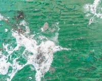 Vogel het dalen op oude groene geschilderde houten achtergrond royalty-vrije stock afbeelding