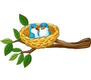 Vogel in het nest op witte achtergrond wordt geïsoleerd die stock illustratie