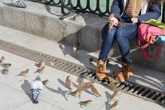 Vogel het voeden Royalty-vrije Stock Foto