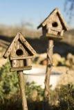 Vogel-Häuser im Sonnenschein Lizenzfreie Stockfotografie