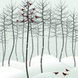 Vogel im Holz Stockfotos