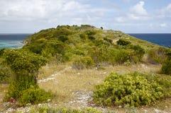 Vogel-Insel, Antigua lizenzfreies stockbild