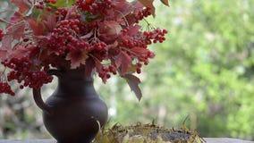 Vogel, mees en nuthatches die zaden van een zonnebloem pikken die zich op een lijst in de tuin bevindt stock footage