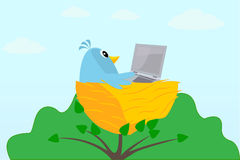 Vogel mit einem Laptop auf einem Baum Stockbild