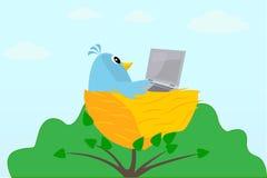 Vogel mit einem Laptop auf einem Baum lizenzfreie stockbilder
