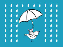 Vogel mit Regenschirm unter dem Regen Lizenzfreie Stockfotos