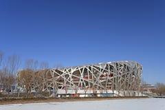 Vogel-Nest-Nationalstadion Lizenzfreie Stockbilder
