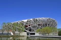 Vogel-Nest-Nationalstadion Lizenzfreie Stockfotografie
