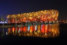 Vogel-Nest in Peking Lizenzfreies Stockfoto