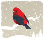 Vogel op boom royalty-vrije illustratie