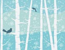 Vogel op de winterscène Stock Foto's