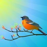 Vogel op een tak royalty-vrije illustratie