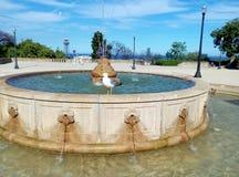 Vogel op fontein Stock Afbeeldingen