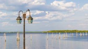 Vogel op lamppost Royalty-vrije Stock Foto