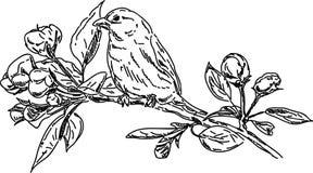 Vogel op tak Royalty-vrije Stock Afbeeldingen