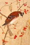 Vogel op takken Stock Foto's