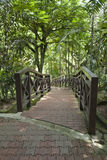 Vogel-Park in Kuala Lumpur Lizenzfreie Stockfotografie