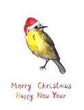 Vogel in rotem Sankt-Hut Watercolourweihnachtsgrußkarte Stock Abbildung