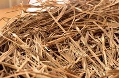 Vogel` s nest verbindend van stro voor zitting Stock Afbeeldingen