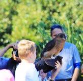 Vogel-Show @ Taronga-Zoo, Sydney Lizenzfreie Stockbilder