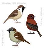 Vogel-Spatzen-gesetzte Karikatur-Vektor-Illustration stock abbildung
