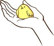 Vogel ter beschikking royalty-vrije illustratie