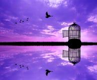 Vogel uit de kooi royalty-vrije illustratie