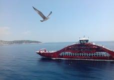 Vogel und Schiff Lizenzfreie Stockbilder