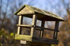 vogel voeder Royalty-vrije Stock Foto