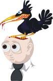 vogel -vogel-braineater Stock Foto's