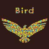 Vogel vom Kreis Lizenzfreies Stockfoto