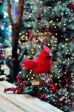 Vogel-Weihnachtsdekoration Lizenzfreies Stockbild