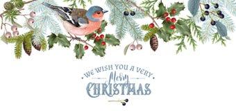Vogel-Weihnachtsgrenze lizenzfreie abbildung